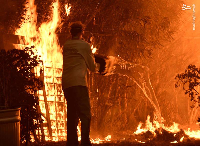 2382919 - مرگبارترین آتش سوزی جنگلهای کالیفرنیا