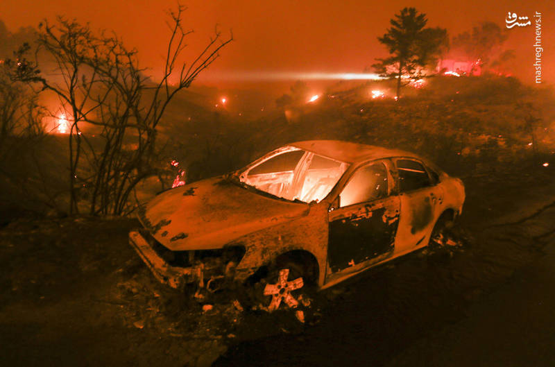 2382923 - مرگبارترین آتش سوزی جنگلهای کالیفرنیا