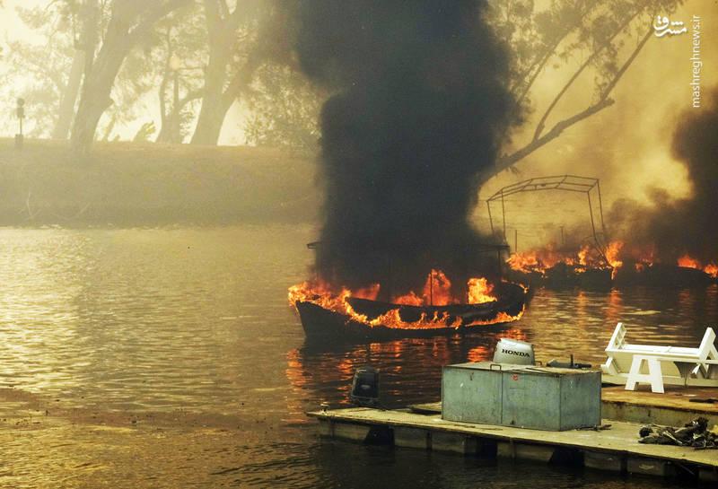 2382925 - مرگبارترین آتش سوزی جنگلهای کالیفرنیا