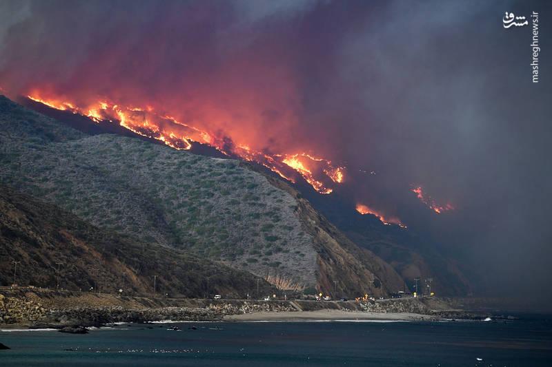 2382927 - مرگبارترین آتش سوزی جنگلهای کالیفرنیا