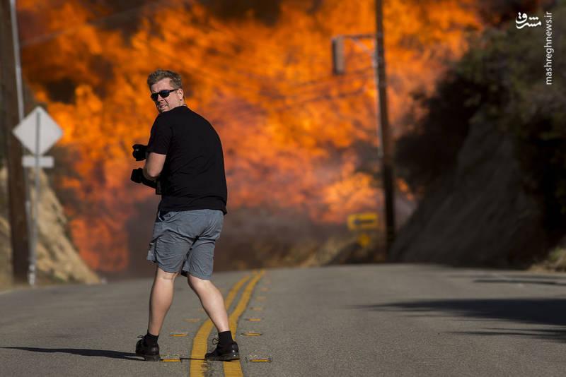 2382929 - مرگبارترین آتش سوزی جنگلهای کالیفرنیا