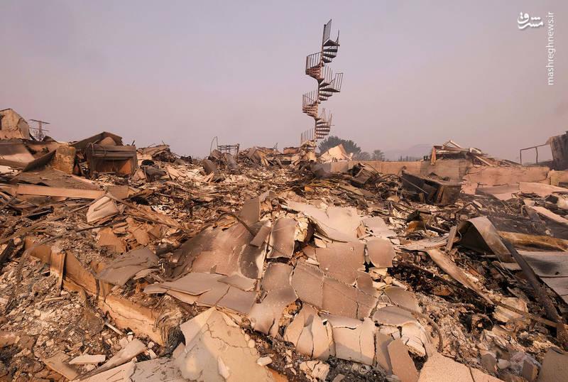 2382930 - مرگبارترین آتش سوزی جنگلهای کالیفرنیا