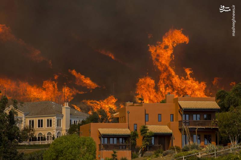 2382932 - مرگبارترین آتش سوزی جنگلهای کالیفرنیا