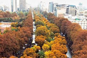 عکس/ نمایی زیبا از پاییز تهران