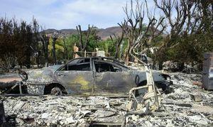 افزایش تعداد کشته شدگان در آتشسوزی کالیفرنیا