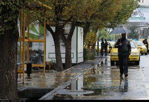 رشد قابل توجه بارش باران در جنوب کشور+جدول