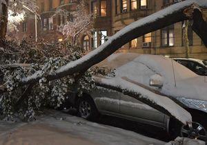 خسارت بارش برف در آمریکا