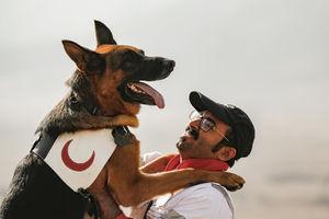 عکس/ مانور مشترک سگهای امدادی ایران و آلمان