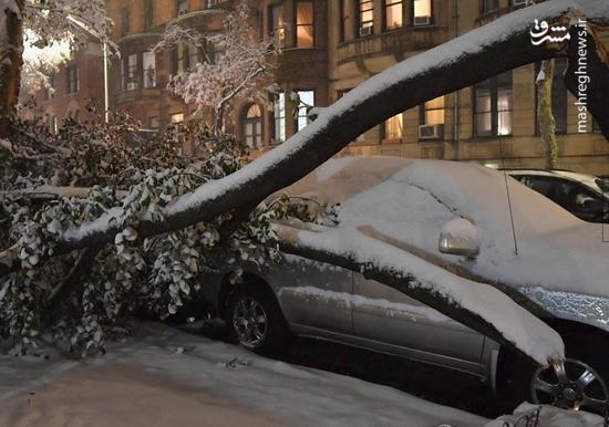 عکس/ خسارت بارش برف در آمریکا