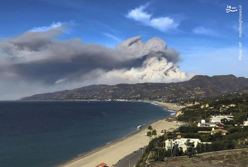 فوران دود بر فراز جنگلهای کالیفرنیا خبر از مرگ دست کم چند ده نفر می دهد