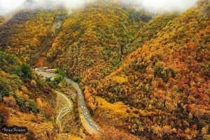 طبیعت خیره کننده و رنگارنگ زیباى پاییزى جاده چالوس