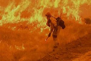 مفقود شدن هزار نفر در آتش سوزی کالیفرنیا