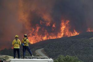 آتشسوزی کالیفرنیا - نمایه