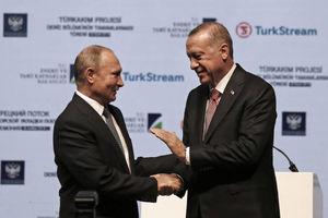 پوتین و اردوغان با هم دیدار میکنند
