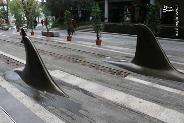 عکس/ خلاقیت جدید چینیها در پیادهرو