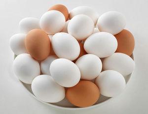 قیمت تخم مرغ بسته بندی در بازار +عکس