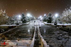 عکس/ بارش برف پاییزی در همدان