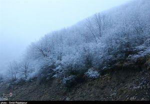 عکس/ بارش برف پاییزی در ییلاقات گیلان
