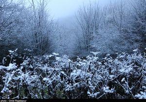 بارش برف پاییزی در ییلاقات گیلان