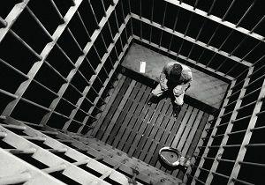وجود مار در سلول، بهانهای برای فرار متهم از زندان
