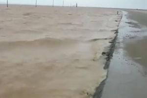 فیلم/ وقتی بیابان تبدیل به دریاچه می شود!