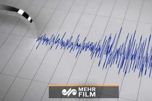 فیلم/ لحظه وقوع زلزله 7 ریشتری در آلاسکا