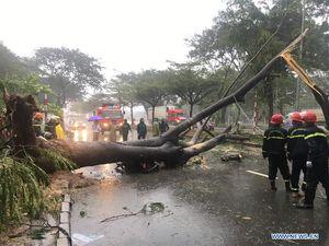 عکس/ خسارات طوفان و سیل در ویتنام
