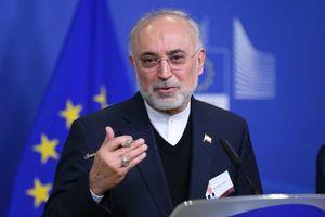 کنفرانس خبری صالحی در بروکسل