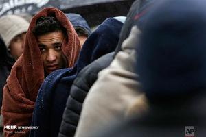 عکس/ مهاجران در مرز بوسنی و کراوسی