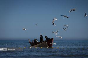 ایران میزبان نشست آینده گروه کاری دریای خزر