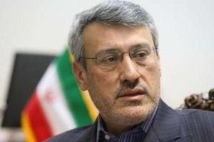 مجوزی که ایران به همسر زاغری داده بود