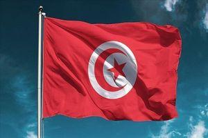 تونس جزئیات تازهای از ترور شهید «محمد الزواری» منتشر کرد