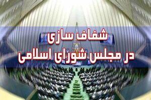 شفاف سازی مجلس درباره میزان مشارکت نمایندگان دررأی گیری هامنتشرشد