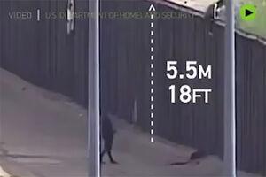 فیلم/ سقوط وحشتناک از دیوار مرزی آمریکا!