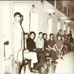 تصویری جالب از طهران قدیم!