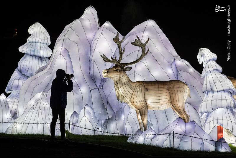 جشنواره هنرهی تجسمی با نور، برگرفته از یک جشن مذهبی در دسامبر