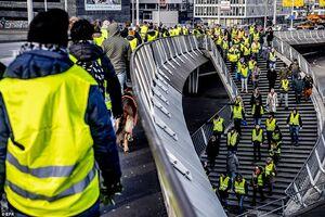 عکس/ تظاهرات جلیقه زردها به هلند رسید!