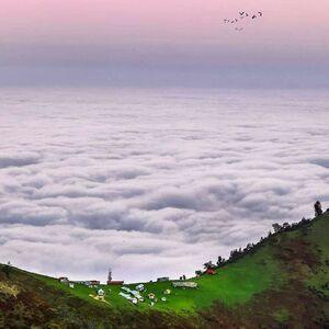تصویری شگفتانگیز از دریای ابر در ارتفاعات ماسال