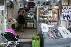مرغ و گوشت در دولت روحانی چقدر گران شد؟ +نمودار