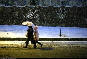 عکس/ بارش سنگین برف در سنندج