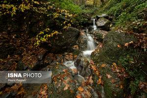 عکس/ طبیعت پاییزی «شیرگاه»