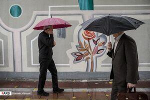 فصل چترها باران