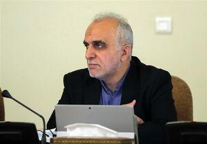 وزیر اقتصاد: دولت خسارت سیل به مردم گلستان را جبران میکند