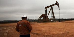 چرا نفت ارزان شد؟