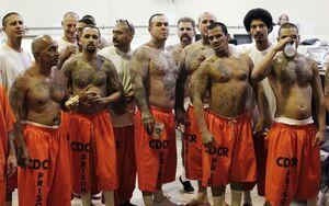 زندان های آمریکا به روایت تصویر