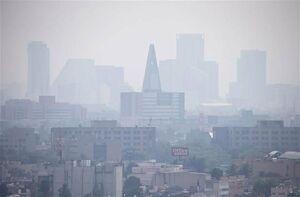 آلودگی هوا آلزایمر میآورد