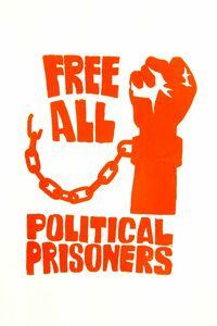 زندانی سیاسی در آمریکا چه کسی است؟ +عکس