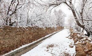 برف و باران و سردی هوا در همه شهرها از پنجشنبه