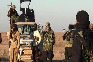 بازگشت خطرناک داعش به عراق/هدف بغداد و ۲ شهر دیگر است