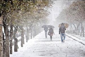 فیلم/ شادی مردم شهرکرد از بارش برف